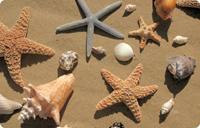 Beachcomber Mat