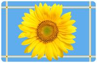 Sunflower Blue Mat