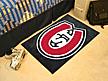 THE Mat for A True Fan! St.CloudStateUniversity.